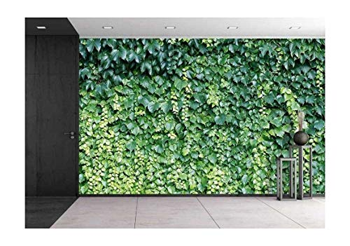 (wall26 - Natural Vines Wallpaper Removable Canvas Art Wall Decor - 100x144 in)