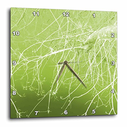 3dRose dpp_37357_3 Surreal White Branches on Lime Green-Wall Clock, 15 by 15-Inch