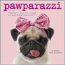 2014 Pawparazzi Mini