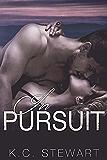 In Pursuit (Adirondack Pack)