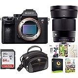 Sony Alpha a7RIII Mirrorless Digital Camera (Body) w/Sigma 30mm f/1.4 Lens
