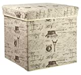 Home Basics Storage Ottoman, Folding Storage Box, Paris Eiffel Tower
