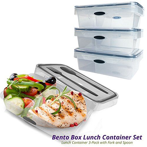 2-compartment-bento-lunch-box-container-3-pack-microwave-and-dishwasher-safe-divider-plastic-lunch-b