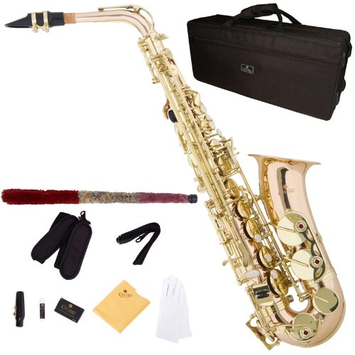 Cecilio 3Series AS-380 Brass Eb Intermediate to Advanced Alto Saxophone with Mouthpiece, Case, 10 Reeds and Accessories - Gold by Cecilio