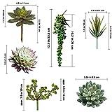 Supla 6 Assorted Fake Succulents Plants Picks