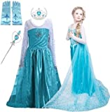 Snow Queen Glitter Dress Party Dress Costume with Dress-up Accessories