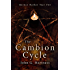 The Cambion Cycle: Quincy Harker Year Two