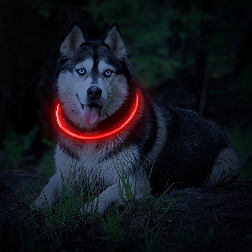 Led Safety Collar (LED Dog Necklace Collar,USB Rechargeable Safety Waterproof Light up Adjustable Flashing Pet Neck Loop by fashion&cool)