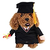 Funny Bachelor Dog Cat Pet Clothes Arms Gog Cat Costumes With Hat for Daily Halloween Christmas Party (L)