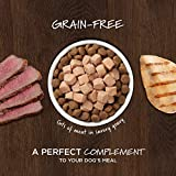 Instinct Healthy Cravings Grain Free Recipe Variety Pack Natural Wet Dog Food Topper by Nature's Variety, 3 oz. Pouches
