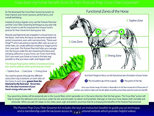 Posture Prep Cross Fiber Groomer Curry Comb for Horses and Ponies by Posture Prep (Image #2)