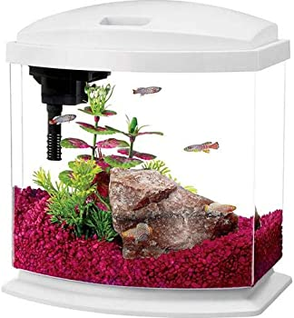 Aqueon Mini Bow 5-Gallon Aquarium Kit