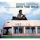 Into the Wild - Die Geschichte eines Aussteigers
