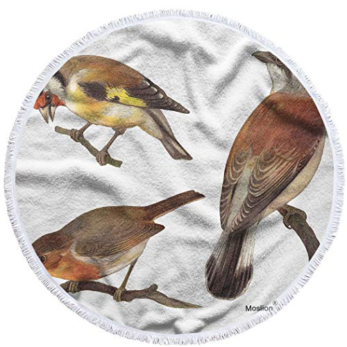 Moslion Bird Collection Round Beach Towels Oversized 63 Inch Goldfinch European Robin Red Backed Shrike Animal Painting Big Beach Towel Microfiber Beach Towel Soft Polyester-Microfiber