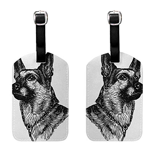 Guardian Tweed - Tags with Animal,Pencil Sketchy Image of Dogs Human Best Friend Guardian Police Animal Artwork,Black and White Celebrity Cruise