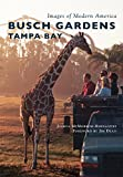 img - for Busch Gardens Tampa Bay (Images of Modern America) book / textbook / text book