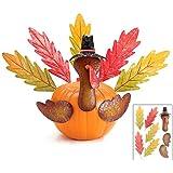 Thanksgiving Pumpkin Turkey Making Kit