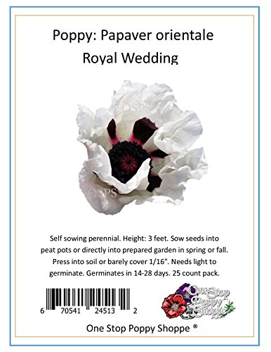 - 25 Oriental Poppy Flower Seeds. Royal Wedding Poppies. One Stop Poppy Shoppe® Brand.