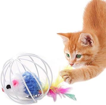 KOBWA - Juguetes para Mascotas, Gatos, Gatitos, Ratas, Plumas en ...