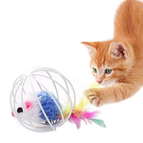 KOBWA - Juguetes para Mascotas, Gatos, Gatitos, Ratas, Plumas en Jaula,