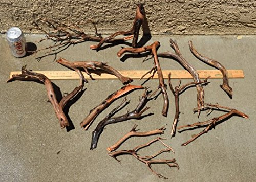 Manzanita Driftwood Nano group