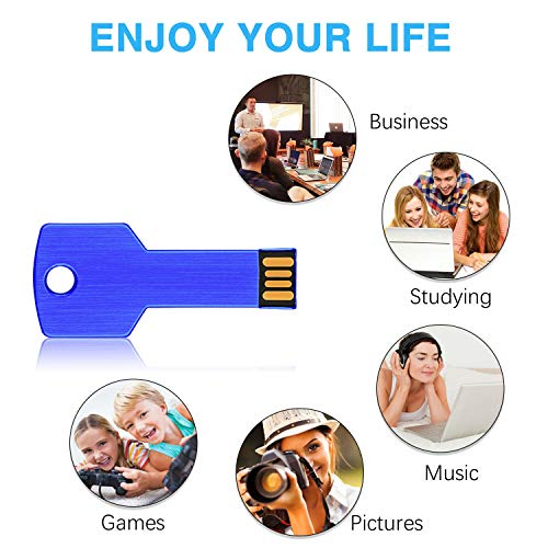 RAOYI 10Pack 16GB USB Flash Drive Key Thumb Drive Metal Memory Sticks Jump Drive 16G, USB 2.0 Stick Blue