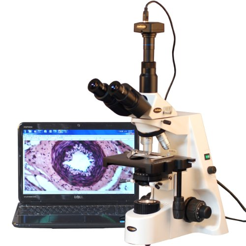 AmScope T690C-PL-10M Digital Trinocular Compound Microscope, 40X-2500X Magnification, WH10x and WH25x Super-Widefield Eyepieces, Infinity Plan Achromatic Objectives, Brightfield, Kohler Condenser, Double-Layer Mechanical Stage, Includes 10MP Camera with Reduction Lens and Software