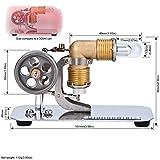 DjuiinoStar Mini Hot Air Stirling Engine: A High