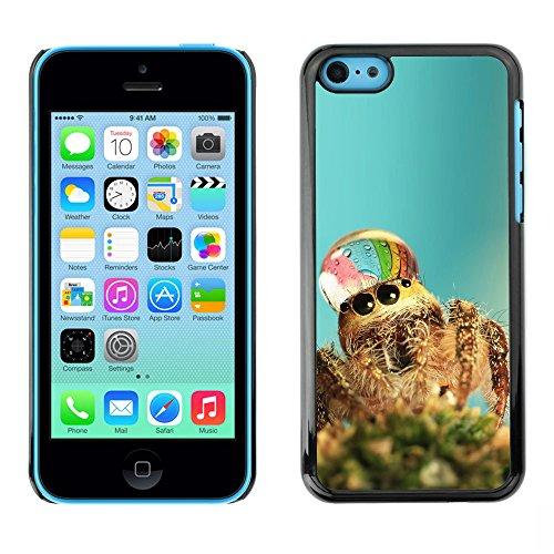 Omega Case PC Polycarbonate Cas Coque Drapeau - Apple iPhone 5C ( Cute Spider Waterdrop )