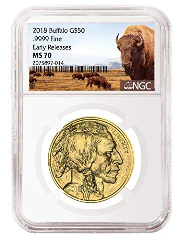 2018 P 1 oz American Gold Buffalo $50 NGC (Gold Ngc Mint)