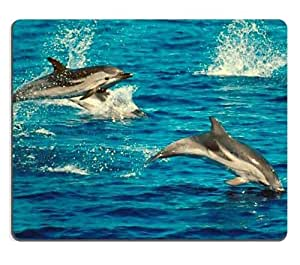 Dolphin Group Ocean Marine Life Water Blue Jumping Diving Swimming Animal Mouse Pads Customized Made to Order Support Ready 9 7/8 Inch (250mm) X 7 7/8 Inch (200mm) X 1/16 Inch (2mm) High Quality Eco Friendly Cloth with Neoprene Rubber Luxlady Mouse Pad Desktop Mousepad Laptop Mousepads Comfortable Computer Mouse Mat Cute Gaming Mouse pad