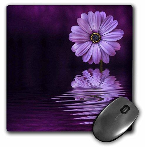 3dRose Mouse Pad Purple Gerbera Daisy Reflecting in Water, 8 x 8