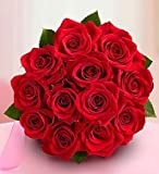 One Dozen Red Roses Bouquet Only by 1-800 Flowers