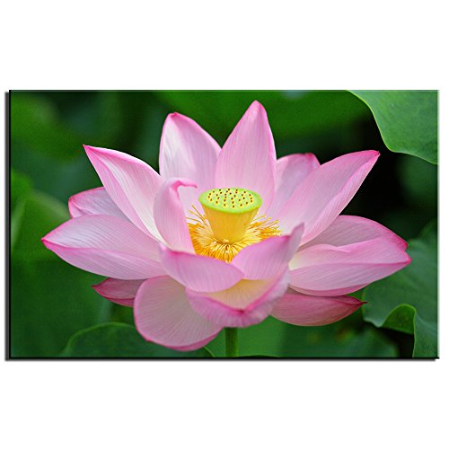 Unframed Modern Wall Art Decor Canvas Artwork pink lotus flower Landscape Painting Printed on Canvas Picture for Home Living Room Office(20x32inch)