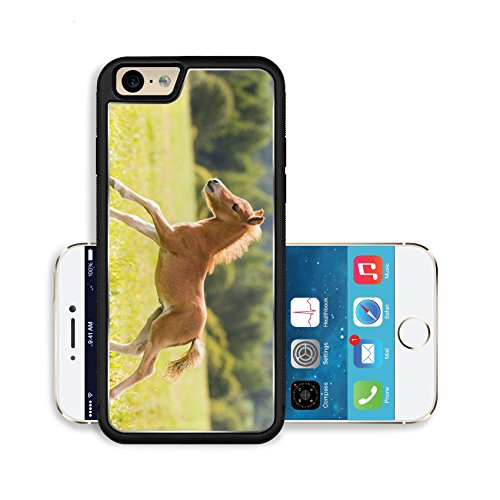 liili-premium-apple-iphone-6-iphone-6s-aluminum-snap-case-foal-mini-horse-falabella-image-id-1521758