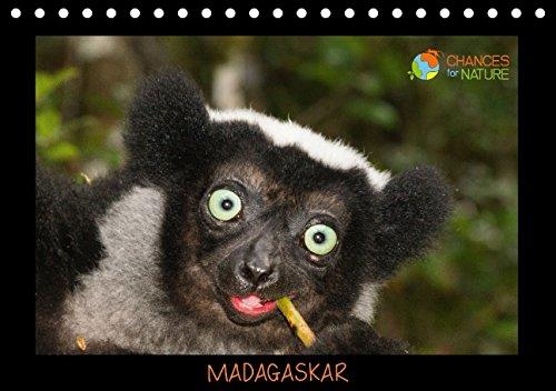 Chances for Nature – Madagaskar (Tischkalender 2015 DIN A5 quer): Einblicke in die einzigartige Tierwelt Madagaskars (Tischkalender, 14 Seiten)