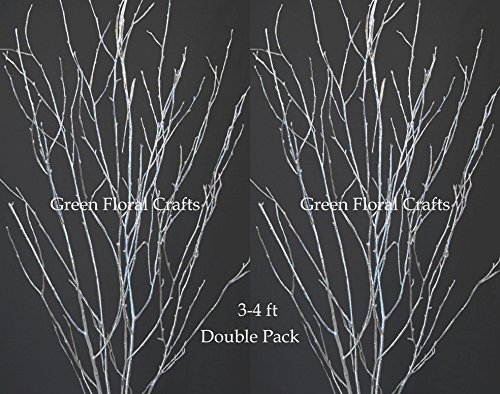 Green Floral Crafts Silver Birch Branches, Pack of 10,  3- 3.5 FT SILVER Branches  Centerpiece Kit with Hanging Crystals