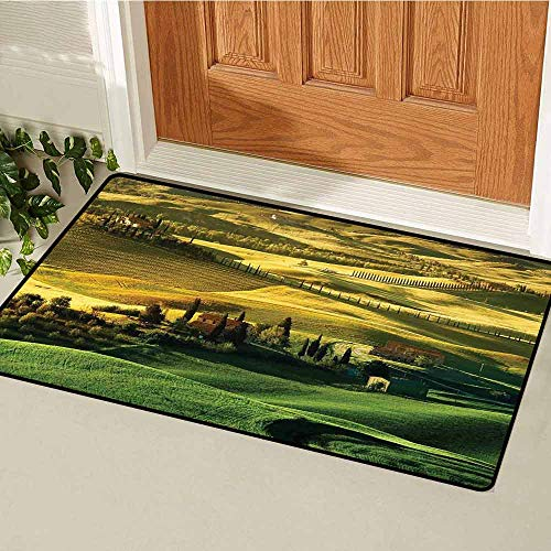 GloriaJohnson Tuscan Welcome Door mat Peaceful Landscape of Pienza Tuscany Vineyard Trees Meadow Hill Ancient House Door mat is odorless and Durable W31.5 x L47.2 Inch Green and Khaki