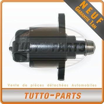 Válvula de cámara lenta Renault Clio II espacio Laguna Megane Trafic: Amazon.es: Coche y moto