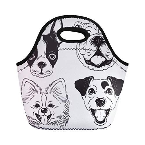 Semtomn Neoprene Lunch Tote Bag Dog Faces Boston Terrier English Bulldog Toy Pomeranian Reusable Cooler Bags Insulated Thermal Picnic Handbag for ()