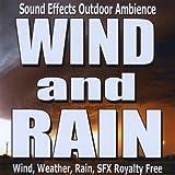 Wind Coming hard, rain