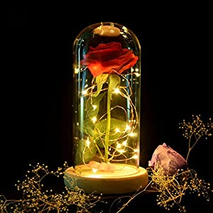 Xinhuaya Beauty and The Beast Red Rose Scenery ArtificialGlass Cover Led in a Glass Dome with A Wooden Base for Valentine's Gifts Anniversary Birthday Home Decor 37