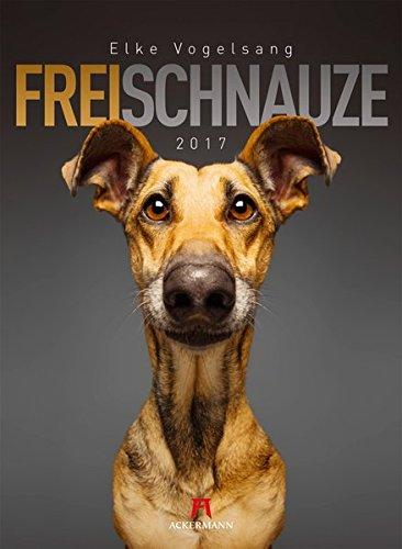 Frei Schnauze 2017