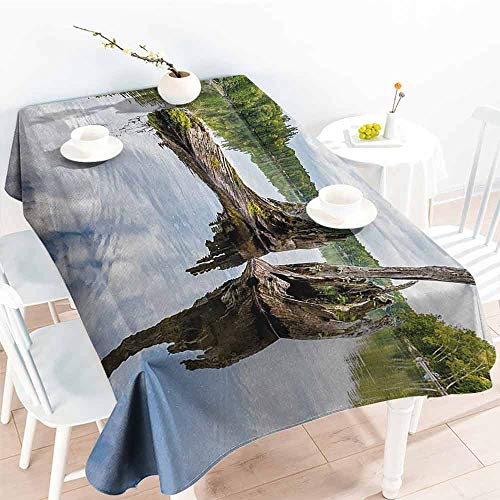 DILITECK Restaurant Tablecloth Driftwood Remains of a White Cedar Tree Trunk in The Lake and The Sky Digital Image Party W60 xL102 Green Pale Grey ()