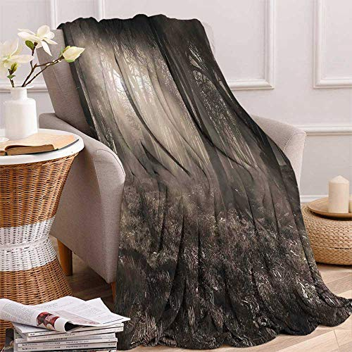 (maisi Gothic Decor Digital Printing Blanket Photo of Dark Forest Scenery with Sunbeams and Fog Vintage Nostalgic Colors Gothic Fantasy Art Summer Quilt Comforter 62