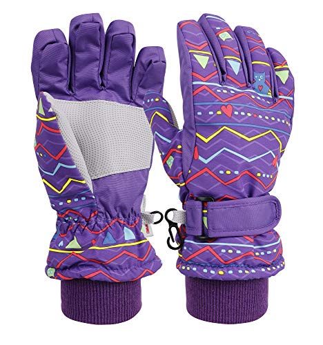 Livingston Kid's Sportswear Waterproof Insulated Ski Gloves, Wave_Purple, Large