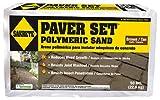 SAKRETE OF NORTH AMERICA 65300037 50 lb Polymeric Sand