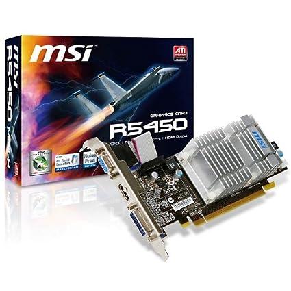 MSI V217-003R 1GB - Tarjeta gráfica (2560 x 1600 Pixeles ...