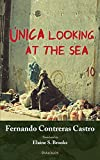 img - for  nica Looking at the Sea book / textbook / text book