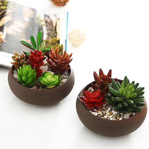6-inch Earthenware Succulent & Cactus Planter Pots, Set of 2, Brown (Clay Pots Shallow)